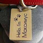 Адресники ручной работы. Ярмарка Мастеров - ручная работа Адресник для собаки из металла Прямоугольник. Handmade.