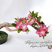 Цветы и флористика handmade. Livemaster - original item Bonsai Azalea Cold porcelain. Handmade.