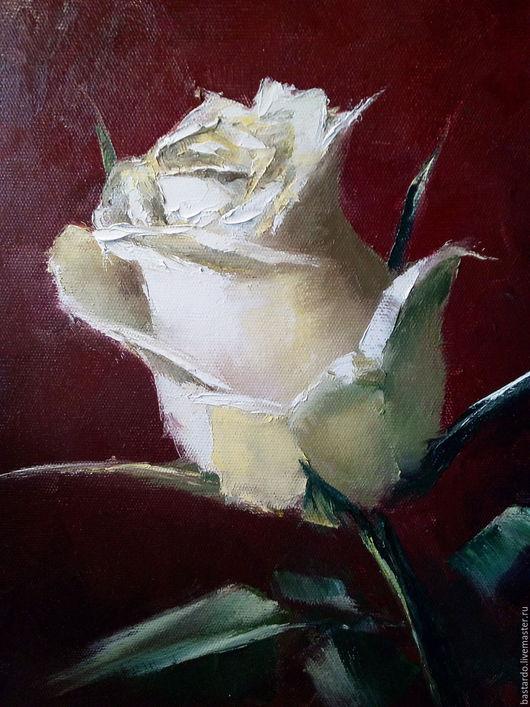 Картины цветов ручной работы. Ярмарка Мастеров - ручная работа. Купить Картина маслом. Белая роза. Handmade. Комбинированный
