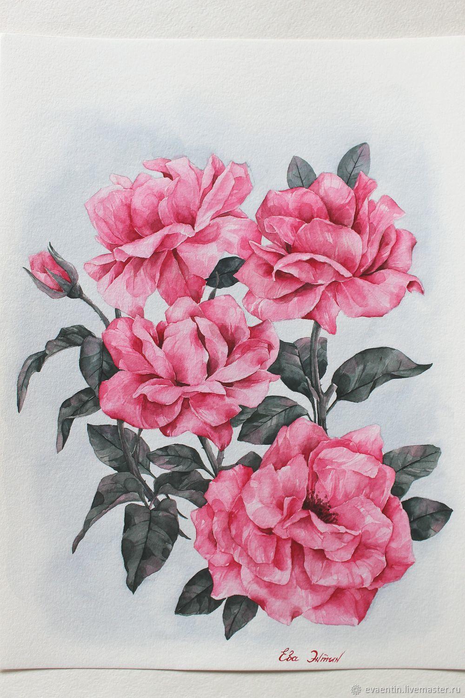 'Pink roses', Pictures, Zvenigorod,  Фото №1