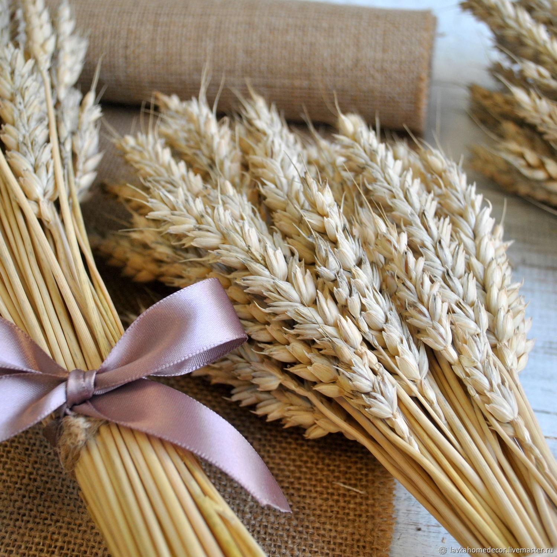 Открытки из колосьев пшеницы