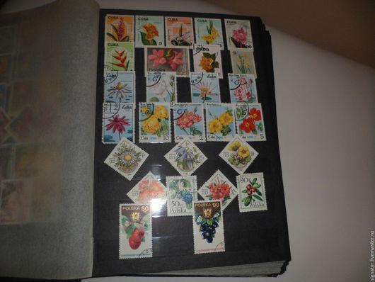 Альбом для марок с великолепной коллекцией прошлый век