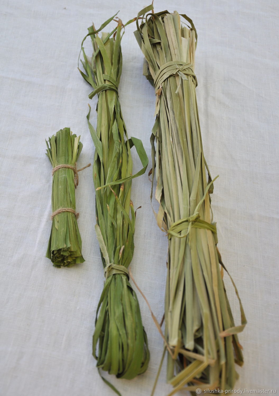 Листья рогоза сухие для плетения, Материалы, Апшеронск, Фото №1