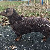 Для домашних животных, handmade. Livemaster - original item Winter jacket for Dachshund