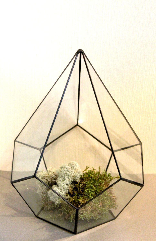 Флорариум. Интерьерный флорариум для растений. Мини-сад. Капля