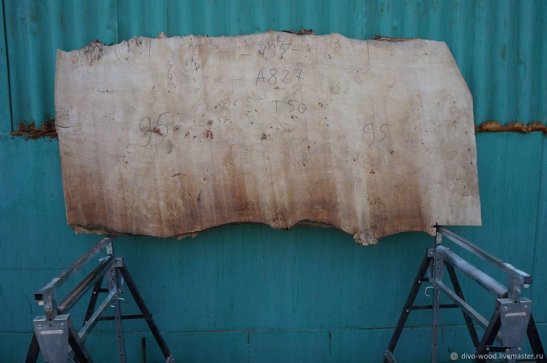 Cape poplar slab (art. TS9), Materials for carpentry, Nizhny Novgorod,  Фото №1