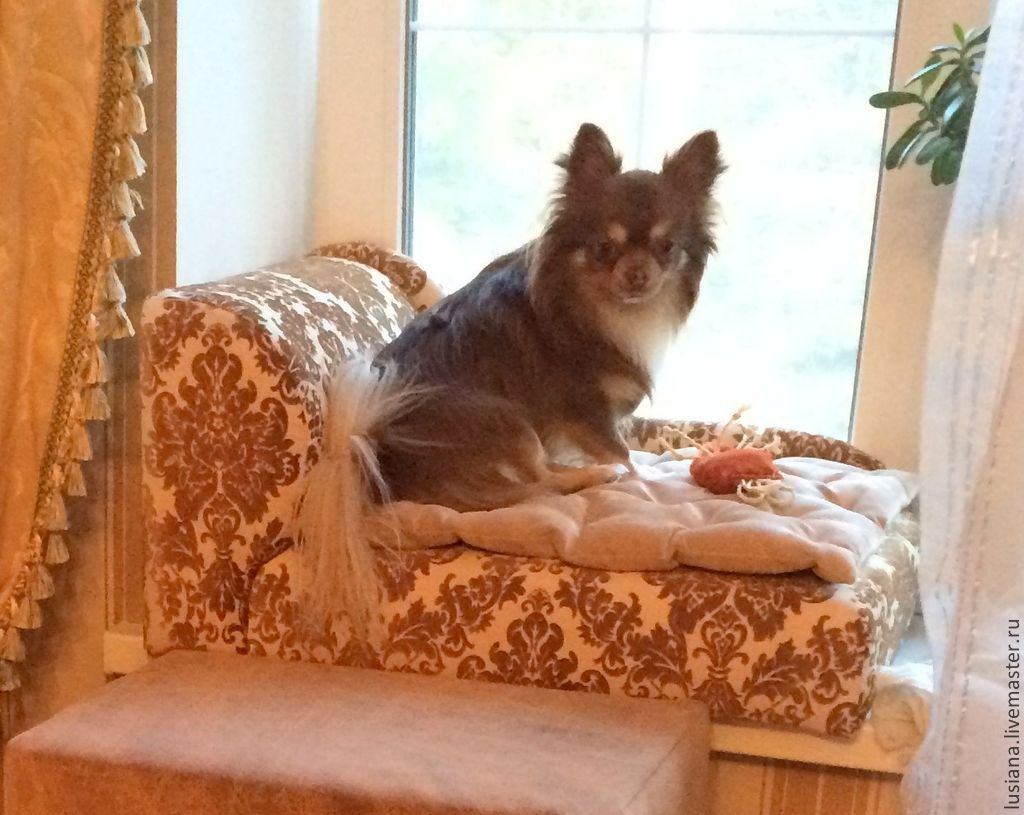 Sofa for dogs and cats Can be ordered in the desired size and color, Accessories for Pets, Ekaterinburg,  Фото №1
