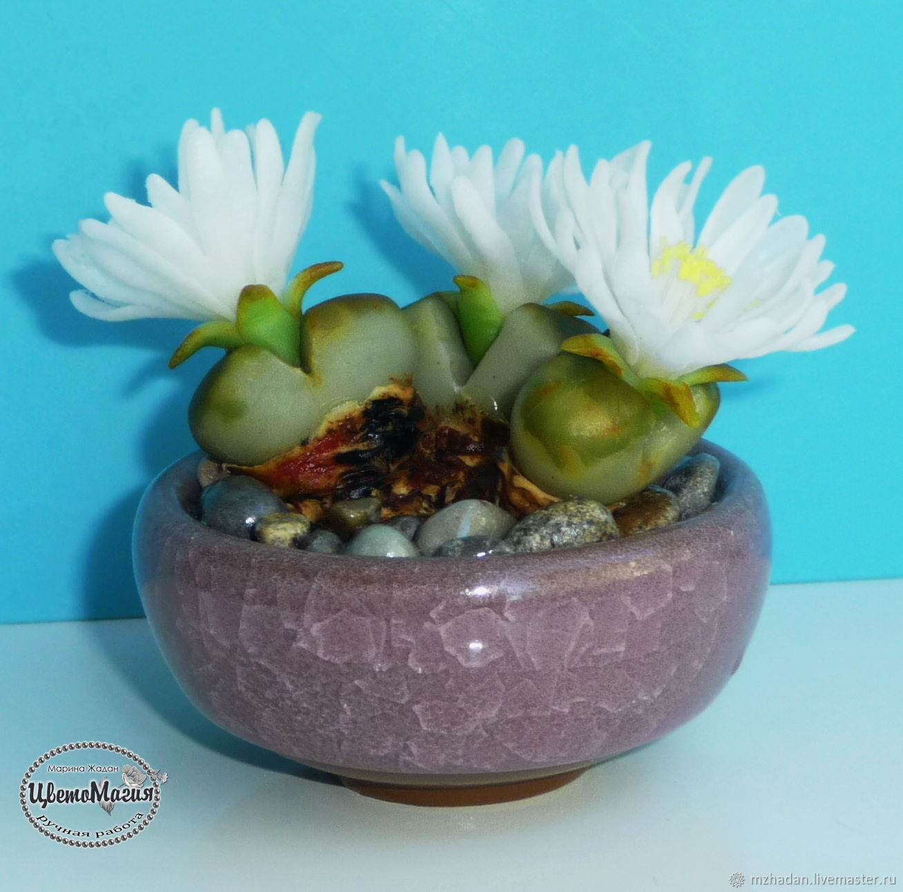 succulents made of polymer clay, cacti in the interior, indoor flowers, author's work, handmade