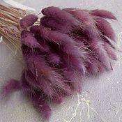 Сухоцветы ручной работы. Ярмарка Мастеров - ручная работа Лагурус 50 шт сухоцвет, темно-брусничный. Handmade.