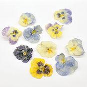 Материалы для творчества handmade. Livemaster - original item Candied flowers for confectioners, 2,5cm. Handmade.