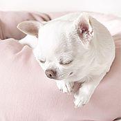 Для домашних животных, ручной работы. Ярмарка Мастеров - ручная работа Розовое облако. Handmade.