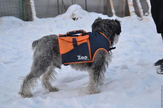 Аксессуары для собак, ручной работы. Ярмарка Мастеров - ручная работа. Купить Рюкзак для маленькой собаки. Handmade. Рюкзак для собаки