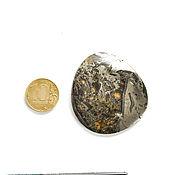 Cabochons handmade. Livemaster - original item Cabochon Ammonite Simbircite 5574. Handmade.