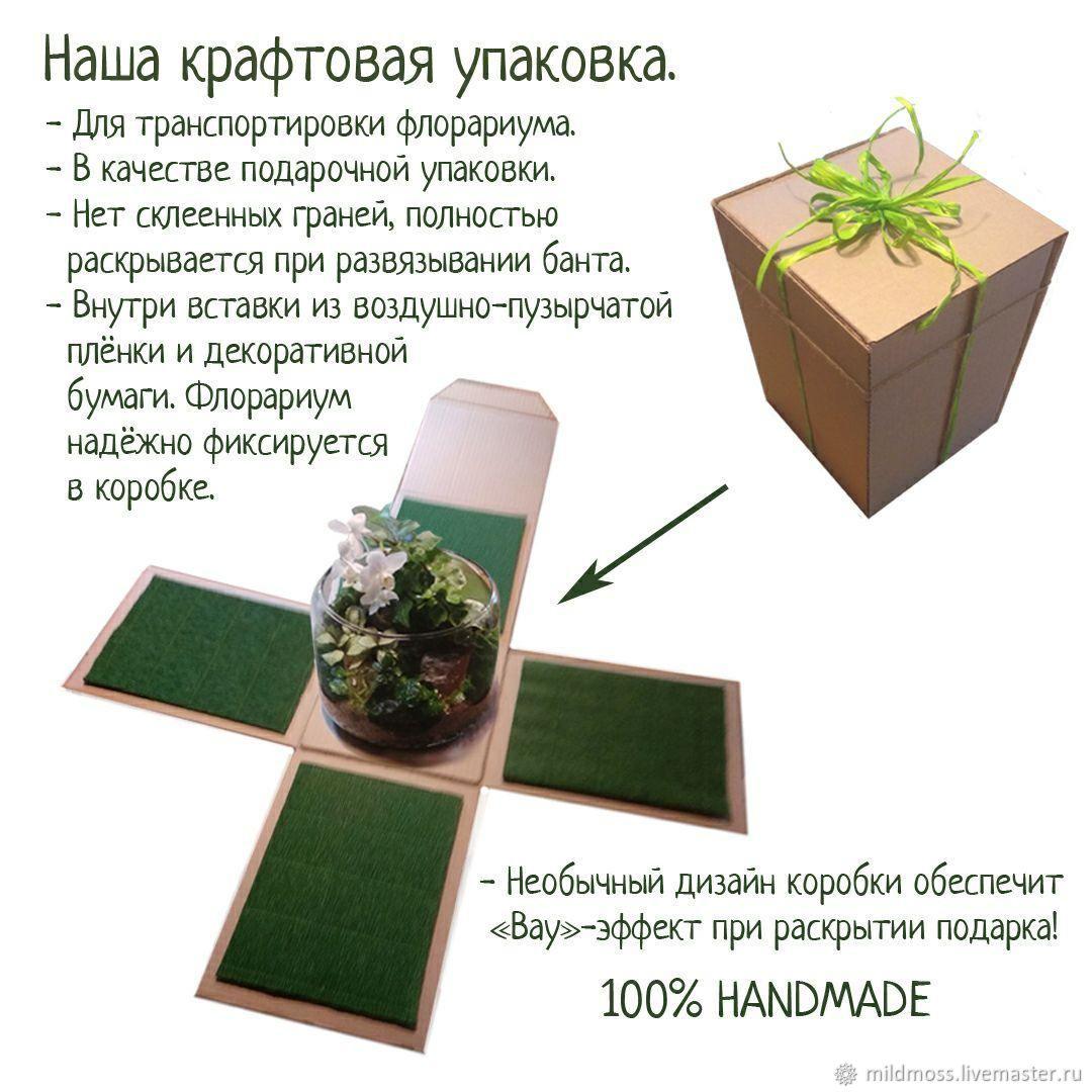 Подарочная упаковка для флорарирума, Флорариумы, Санкт-Петербург,  Фото №1