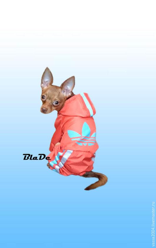 """Одежда для собак, ручной работы. Ярмарка Мастеров - ручная работа. Купить Дождевик """"Спортивный"""". Handmade. Рыжий, дождевик, чихуахуа, пудель"""