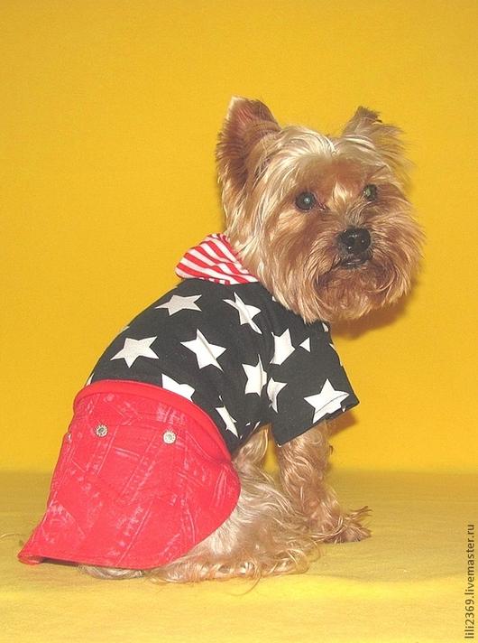 """Одежда для собак, ручной работы. Ярмарка Мастеров - ручная работа. Купить Комплект """"Гуд бай, Америка!"""". Handmade. Комплект"""