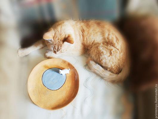 Тарелки ручной работы. Ярмарка Мастеров - ручная работа. Купить Керамическая тарелка Кот и молоко. Handmade. Белый, подарок девушке