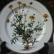 "Тарелки обеденные Villeroy&Boch, ""Botanica"", Люксембург"