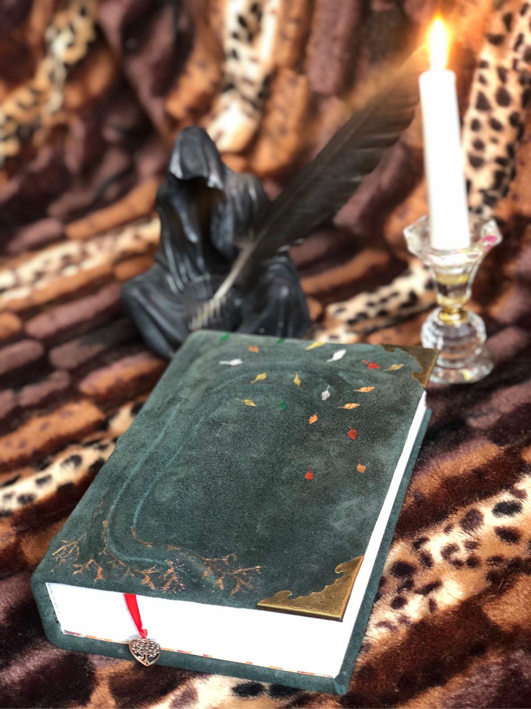 Книга ручной работы из натуральной замши, Гримуар, Тамбов,  Фото №1