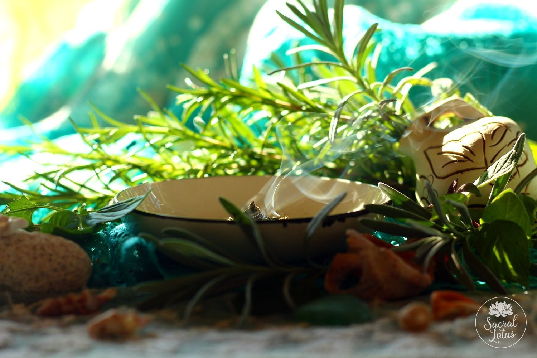Fumigation Of The Mediterranean, Fumigation herbs, Goryachy Klyuch,  Фото №1