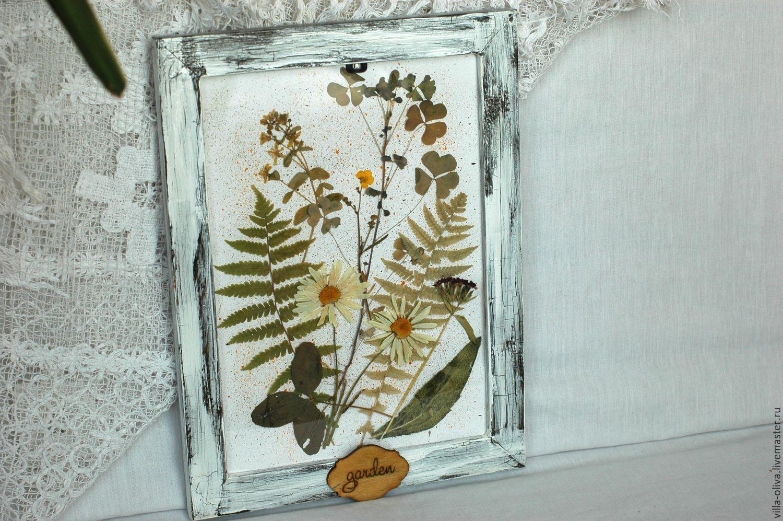 Сухие цветы в рамке фото