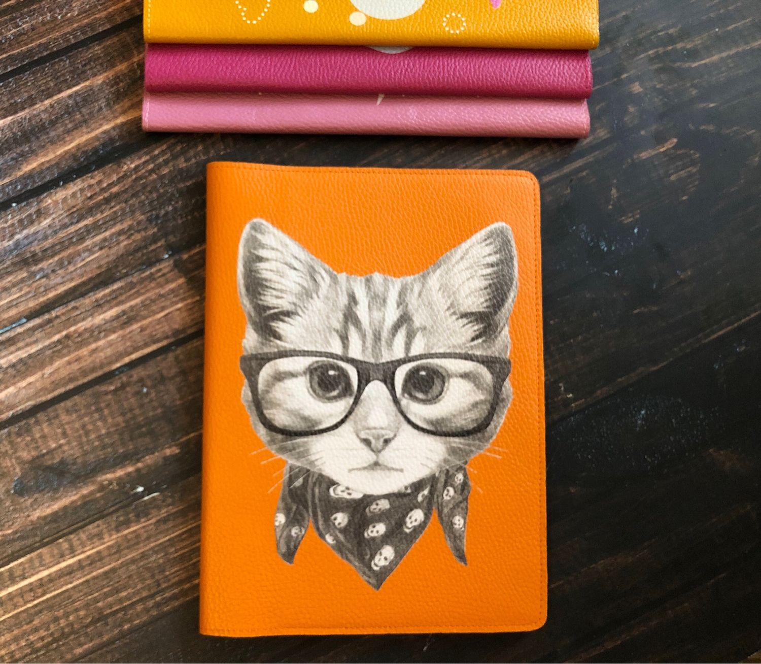 Organizer for documents 'cat in glasses' format B5, Folder, Moscow,  Фото №1