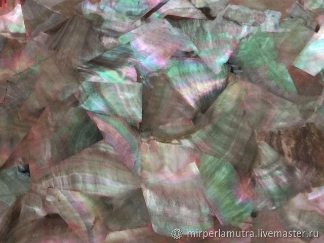 Пластина 026 из черной жемчужницы, Ракушки, Обнинск,  Фото №1