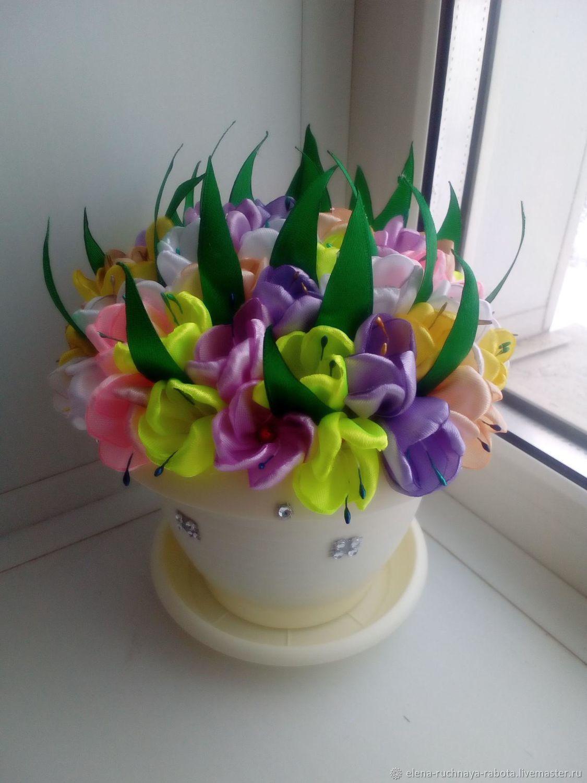 горшочек с цветами, Подарки на 8 марта, Курск,  Фото №1