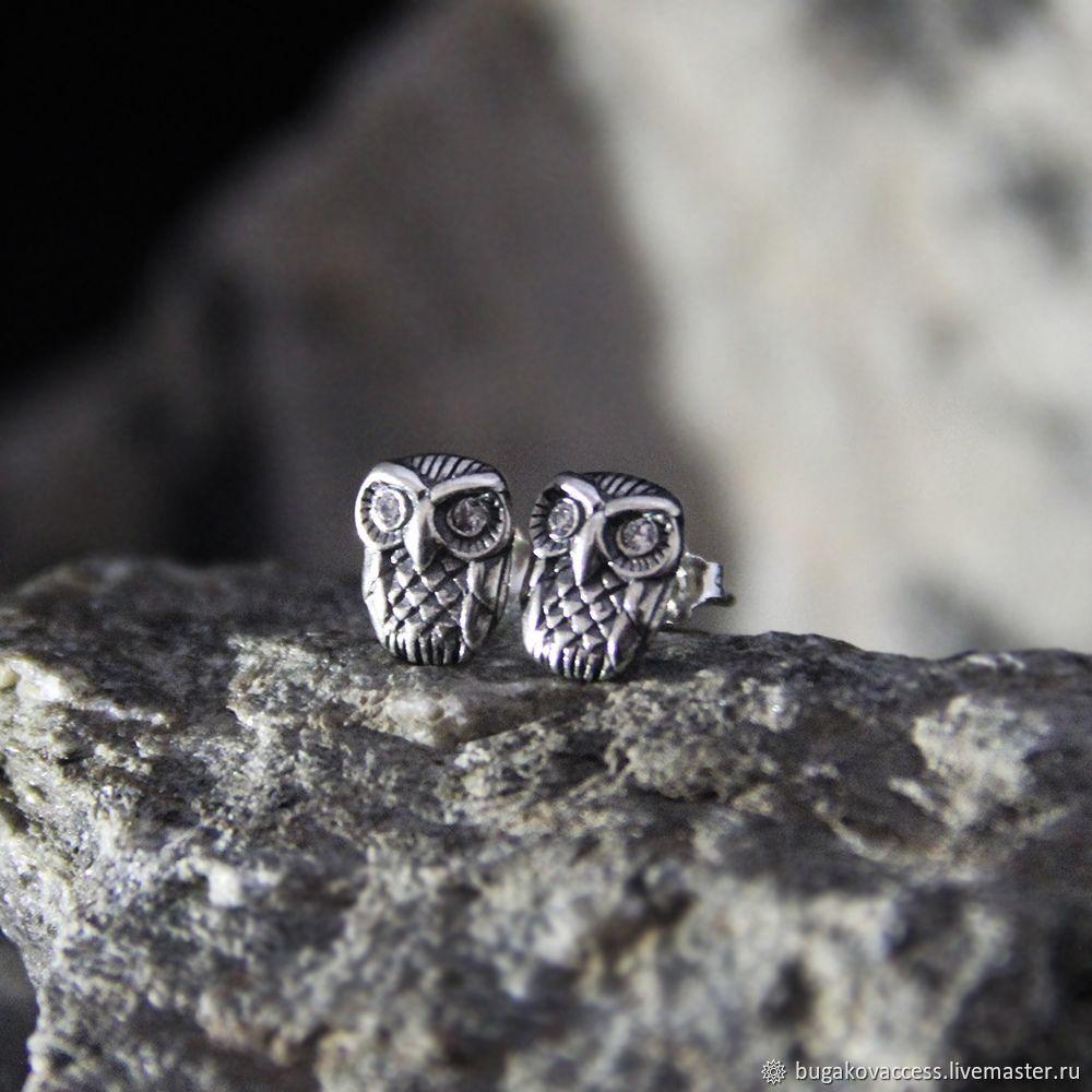 Owl earrings in silver 925, Stud earrings, Moscow,  Фото №1