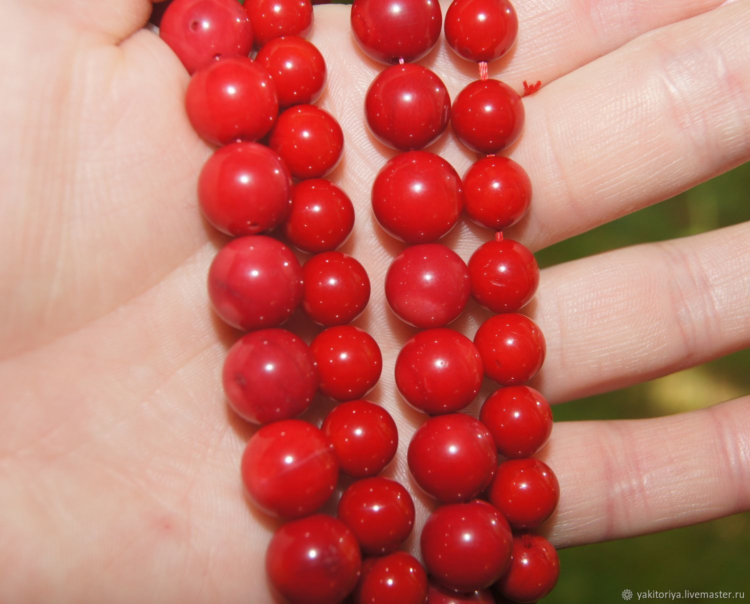 Coral red natural beads ball 11, 10, 8,5-9, and 8mm, Beads1, Moscow,  Фото №1
