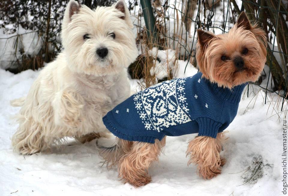 Одежда для собак, ручной работы. Ярмарка Мастеров - ручная работа. Купить Свитер для собаки Снеговики. Handmade. Бордовый, той-терьер