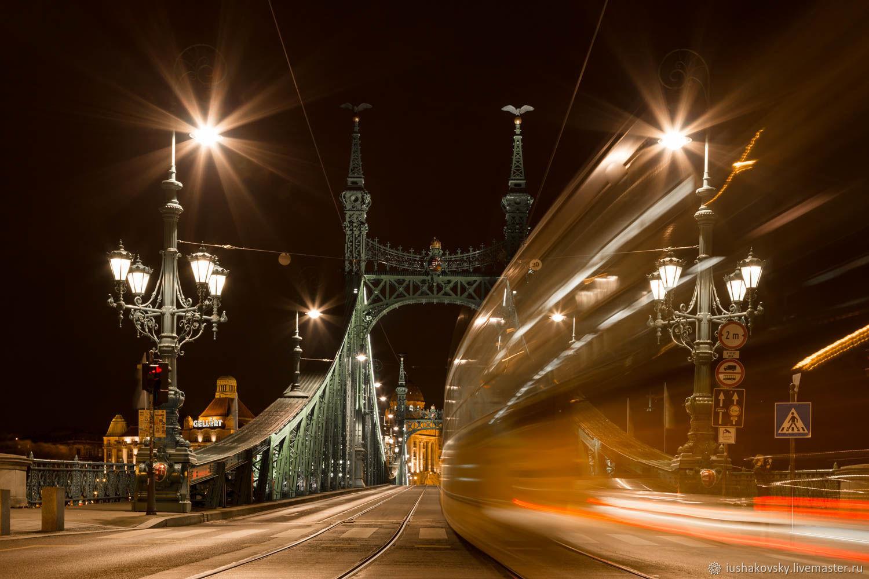 Фотокартины ручной работы. Ярмарка Мастеров - ручная работа. Купить Фотокартина 'Мост Свободы'. Handmade. Фотография, мост, фото, Венгрия