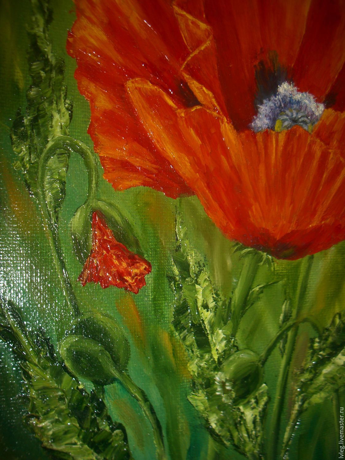 Oil painting bright poppies canvas poppies flowers shop online order oil painting bright poppies canvas poppies flowers mightylinksfo