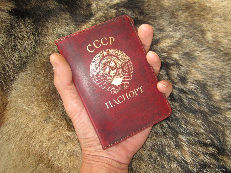 Passport cover, Cover, Nizhnij Tagil,  Фото №1