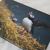 """Картины и панно ручной работы. Ярмарка Мастеров - ручная работа Фото картина на холсте """"Пейзаж с тупиком"""". Handmade."""
