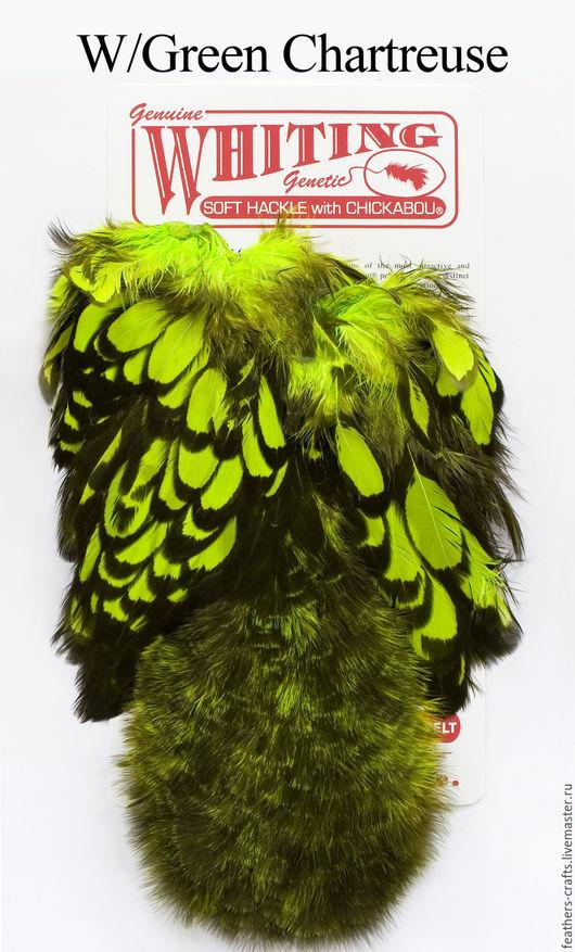 Другие виды рукоделия ручной работы. Ярмарка Мастеров - ручная работа. Купить Перья American Hen SH/C BLW/Fl. Green Chartreuse (42803356). Handmade.
