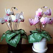 Цветы и флористика ручной работы. Ярмарка Мастеров - ручная работа Цикламены розовый и белый композиция. Handmade.