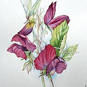 """Картины и панно ручной работы. Ярмарка Мастеров - ручная работа Рисунок """"Душистый горошек"""" акварель. Handmade."""