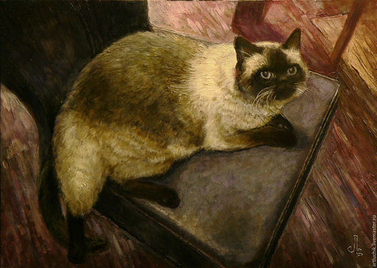 картина. портрет по фотографии. кот Геркулес на кухне