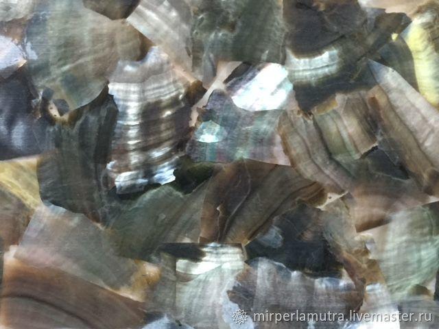 Пластина 025 из черной жемчужницы, Аппликации, Обнинск, Фото №1