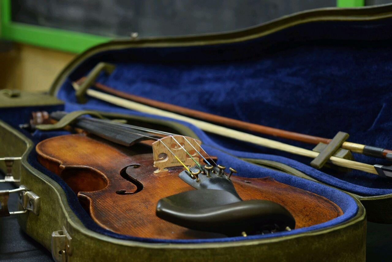 Футляр для скрипки, Чехлы для инструментов, Москва,  Фото №1