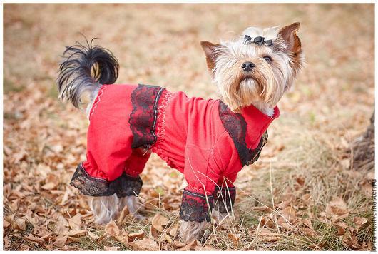 """Одежда для собак, ручной работы. Ярмарка Мастеров - ручная работа. Купить Комбинезон для собаки """"Виконт"""". Handmade. Ярко-красный"""