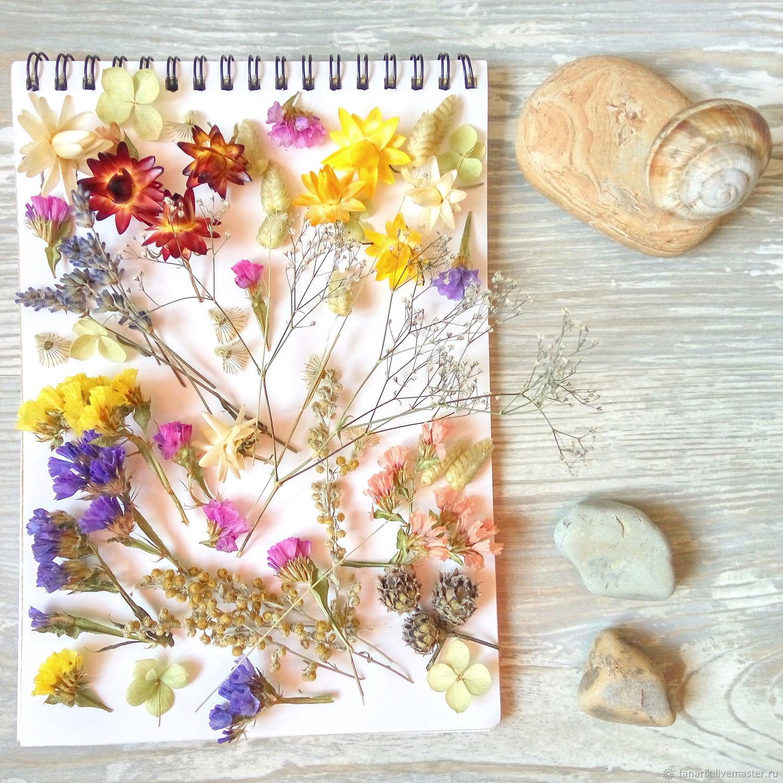 них, картинки коллажи сухоцветы окончанию