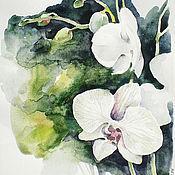 Картины и панно handmade. Livemaster - original item Watercolor White Orchid. Handmade.