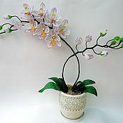 """Цветы и флористика ручной работы. Ярмарка Мастеров - ручная работа Орхидея """"Нежность"""". Handmade."""