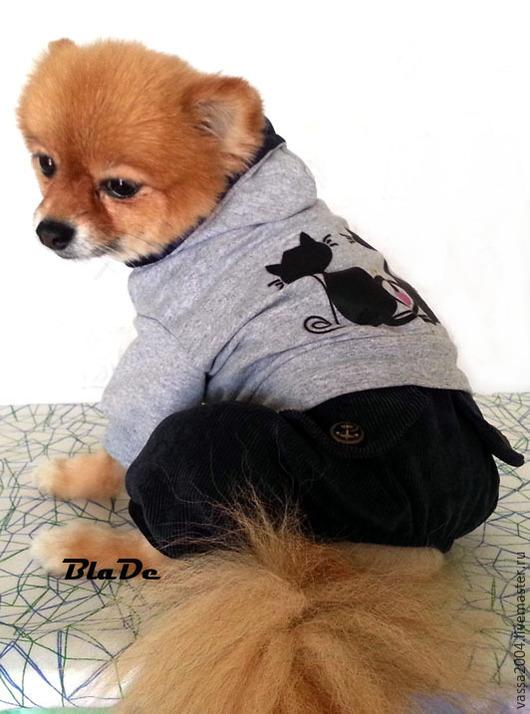 """Одежда для собак, ручной работы. Ярмарка Мастеров - ручная работа. Купить Комбинезон """"Черные кошки """". Handmade. Одежда для собак"""