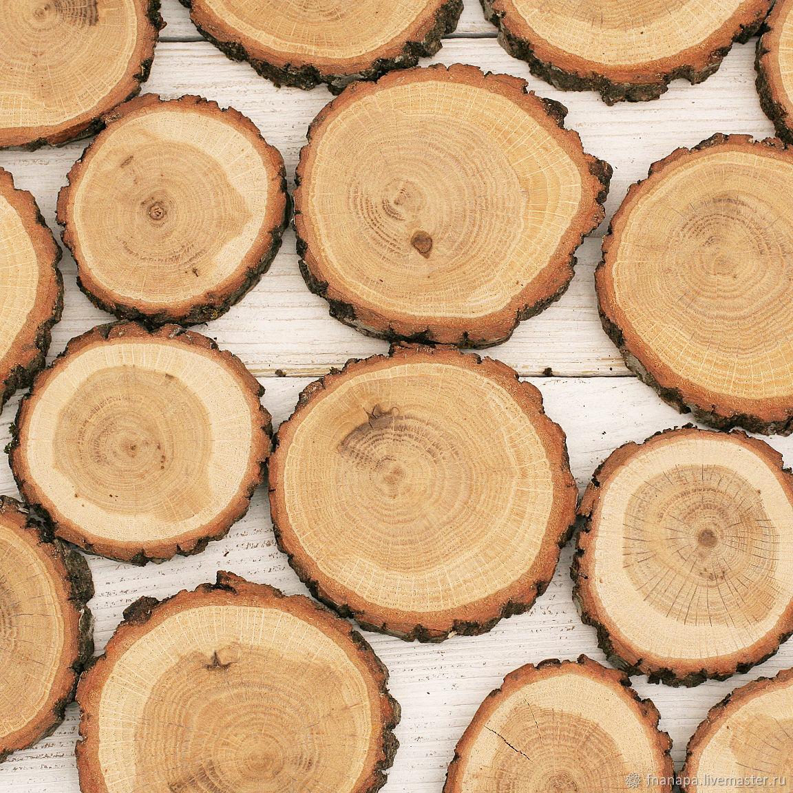 Спилы дуба, Спилы дерева, Анапа,  Фото №1