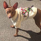 handmade. Livemaster - original item Sweater for dogs. Handmade.