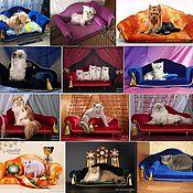 Для домашних животных, ручной работы. Ярмарка Мастеров - ручная работа Диванчики для кошек и собак на заказ.. Handmade.