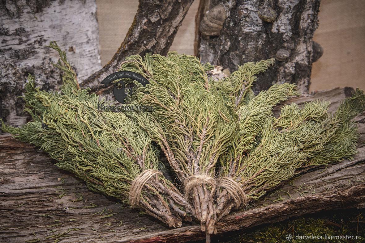 шапки притягивает магические травы список фото внутри которого